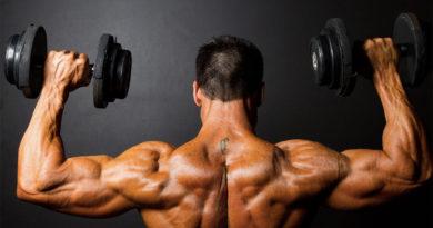 نصائح لتضخيم العضلات